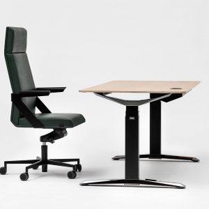 birou ergonomic
