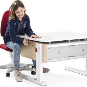 birouri ergonomice copii
